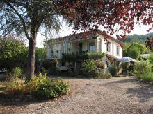 A vendre Bordezac 300071178 Agence vigne