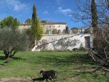 A vendre Barjac 300071225 Agence vigne