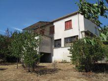 A vendre Saint Jean De Valeriscle 300071336 Agence vigne