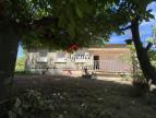 A vendre Saint Ambroix 300071391 Agence vigne