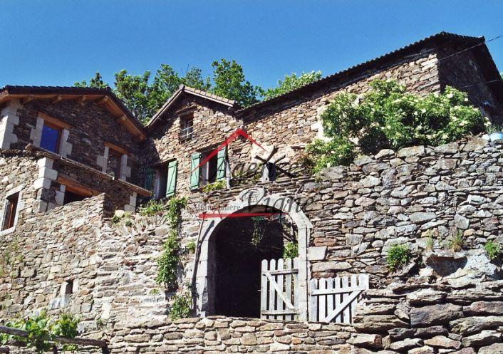 A vendre Aujac 300071415 Agence vigne