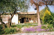 A vendre Saint Ambroix 30007350 Agence vigne