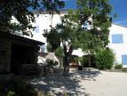 A vendre Saint Ambroix 30007875 Agence vigne