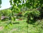 For sale  Besseges   Réf 300081464 - Agence vigne