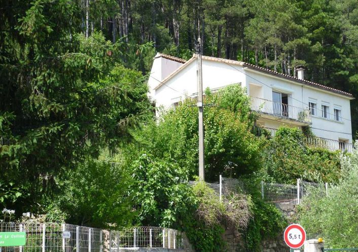 A vendre Besseges 30008172 Agence vigne