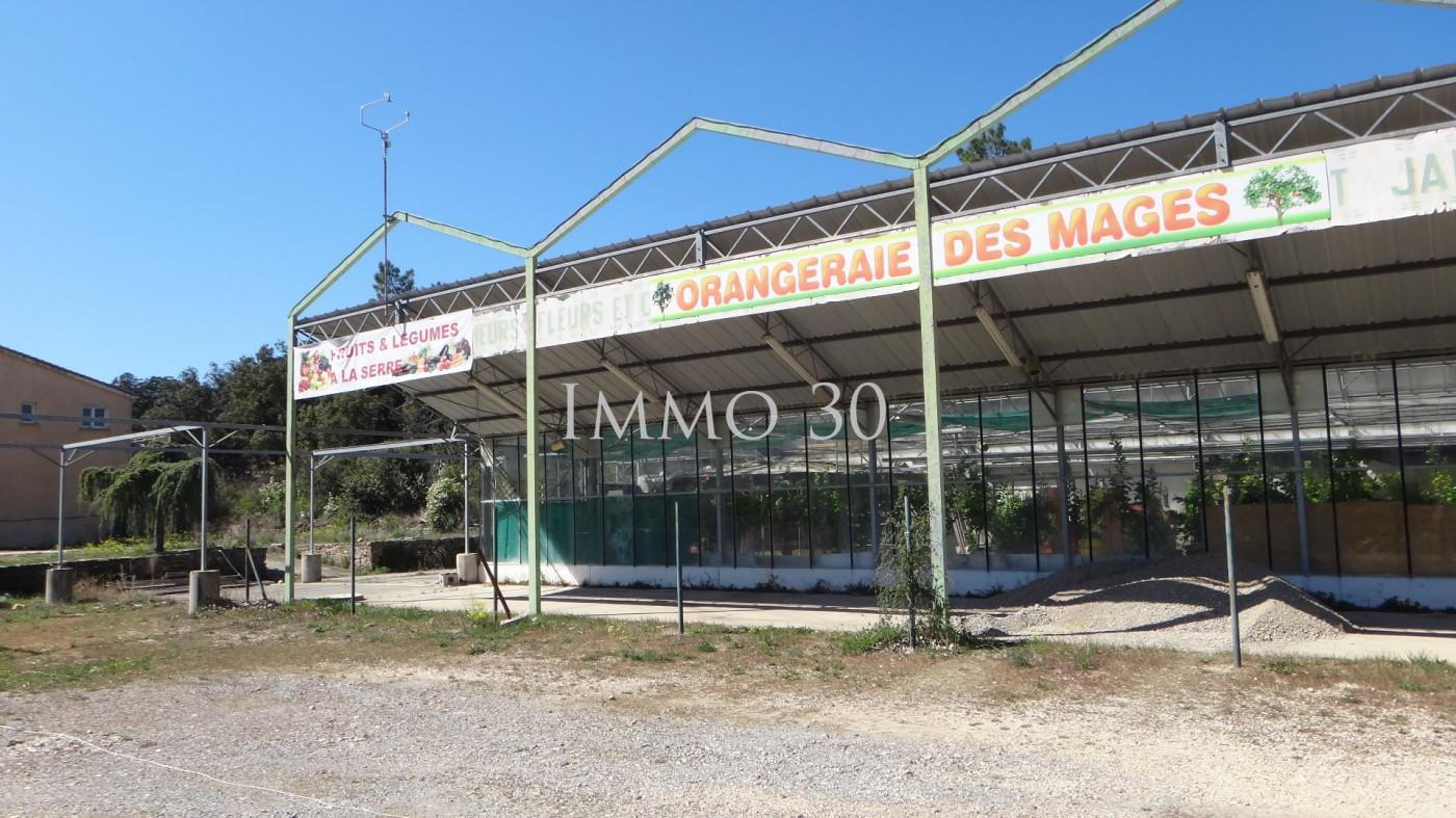 A vendre Les Mages 301223958 Immo 30