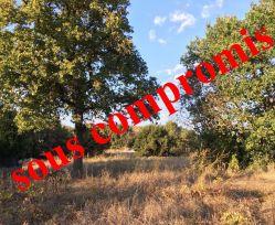 A vendre Calvisson  30135535 Agence les 3 moulins