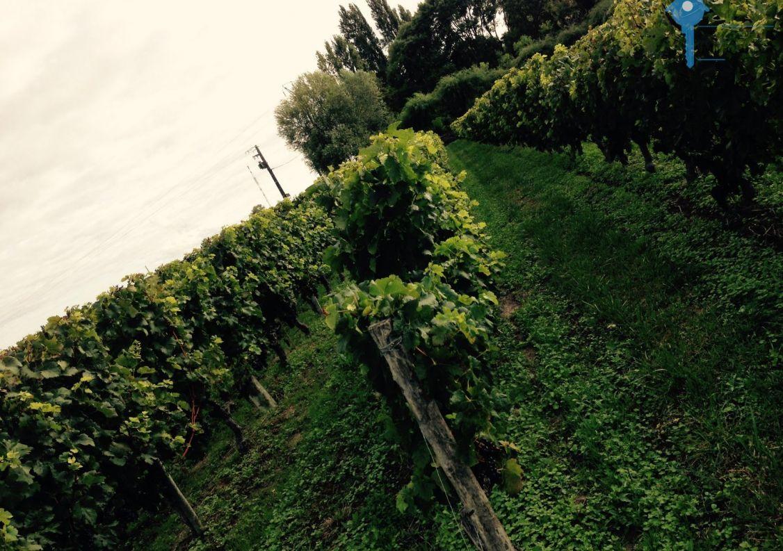 A vendre Bordeaux 3438050903 Comptoir immobilier de france