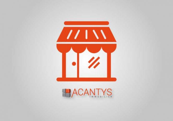 A vendre Saint-orens-de-gameville 310312501 Acantys immobilier