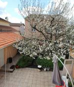 A vendre Toulouse  310377908 Booster immobilier