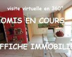A vendre Toulouse 310424532 L'affiche immobilière