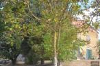 A vendre  Caraman | Réf 310472020 - Roméro immobilier
