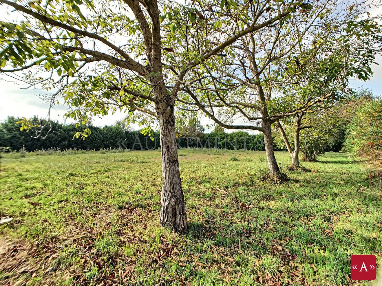 A vendre Buzet-sur-tarn 310524748 Autrement conseil immobilier
