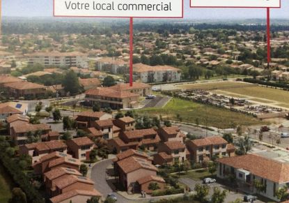 A vendre Frouzins 31053584 17 avenue immobilier