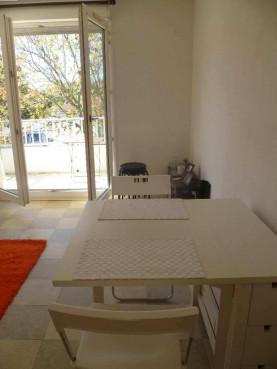 A vendre Toulouse 3105431313 Sud location transaction toulousaine