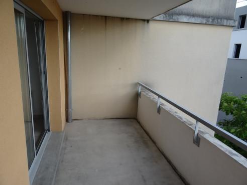 A vendre Toulouse 3105445739 Sud location transaction toulousaine