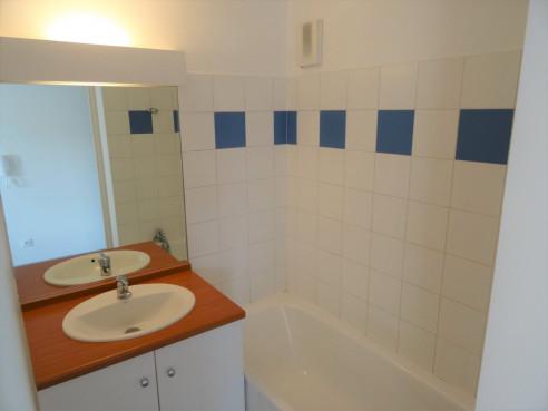 A vendre Toulouse 3105449574 Sud location transaction toulousaine