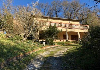 A vendre Daux 310613398 Eclair immobilier