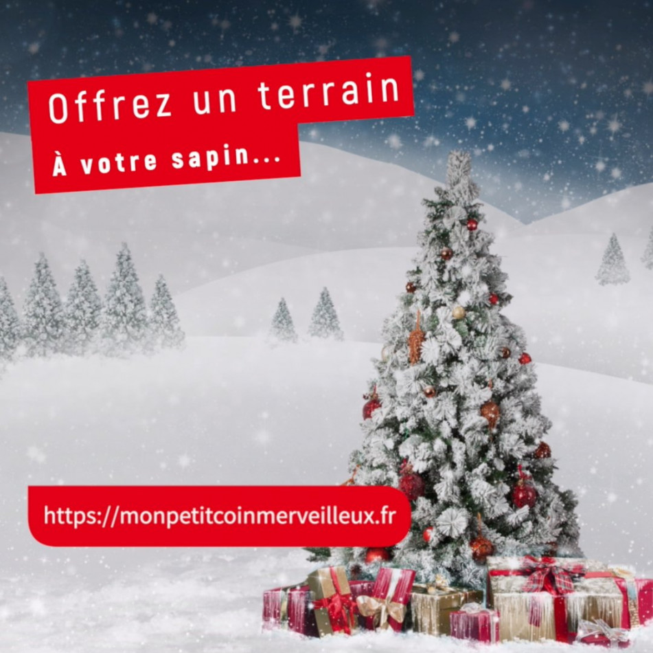 A vendre Toulon 310669625 B2i conseils