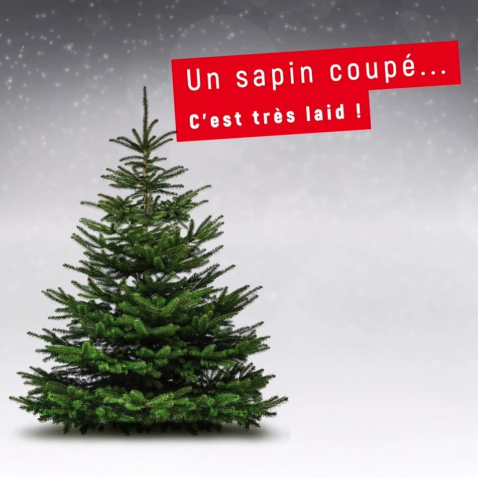 A vendre Toulon 310669627 B2i conseils
