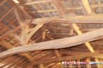 For sale Salies Du Salat 310751158 Agence du cagire