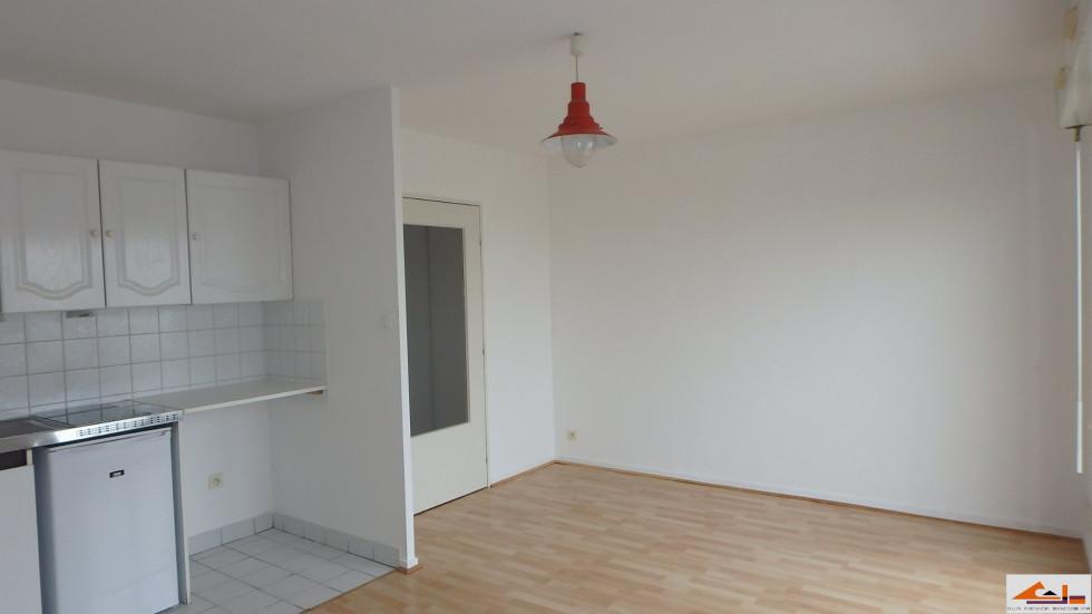 A vendre Toulouse 310791748 Sud espace immobilier
