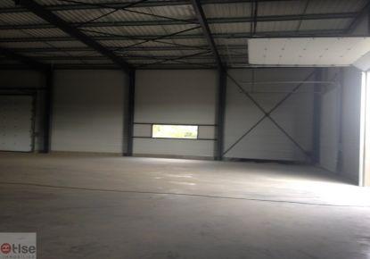 A louer Castelmaurou 310923998 Tlse immobilier