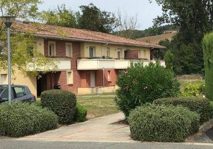 A louer Buzet-sur-tarn 310926349 Tlse immobilier