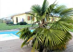 A vendre Bruguieres 31093637 Lacoste immobilier