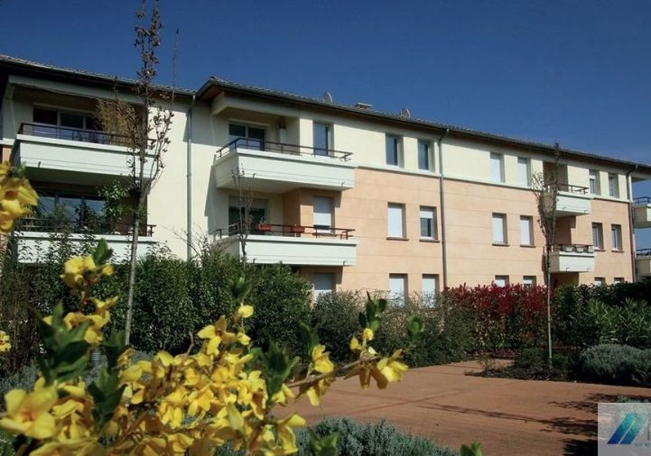 A vendre Toulouse 310955746 Fcpi balma