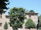 A vendre  Toulouse   Réf 31117519 - Raoux immobilier
