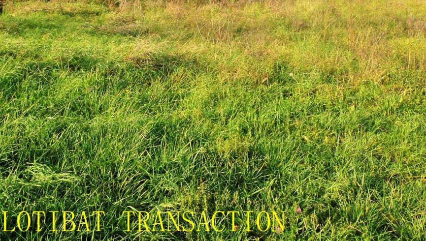A vendre Roqueseriere 31126110 Lotibat transaction