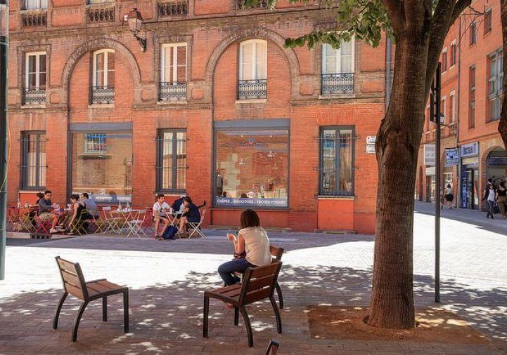 A vendre Toulouse 31140111 Pro immo conseil