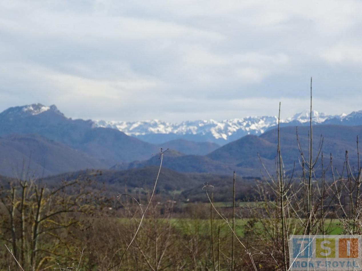 A vendre  Montrejeau | Réf 311903090 - Tsi mont royal