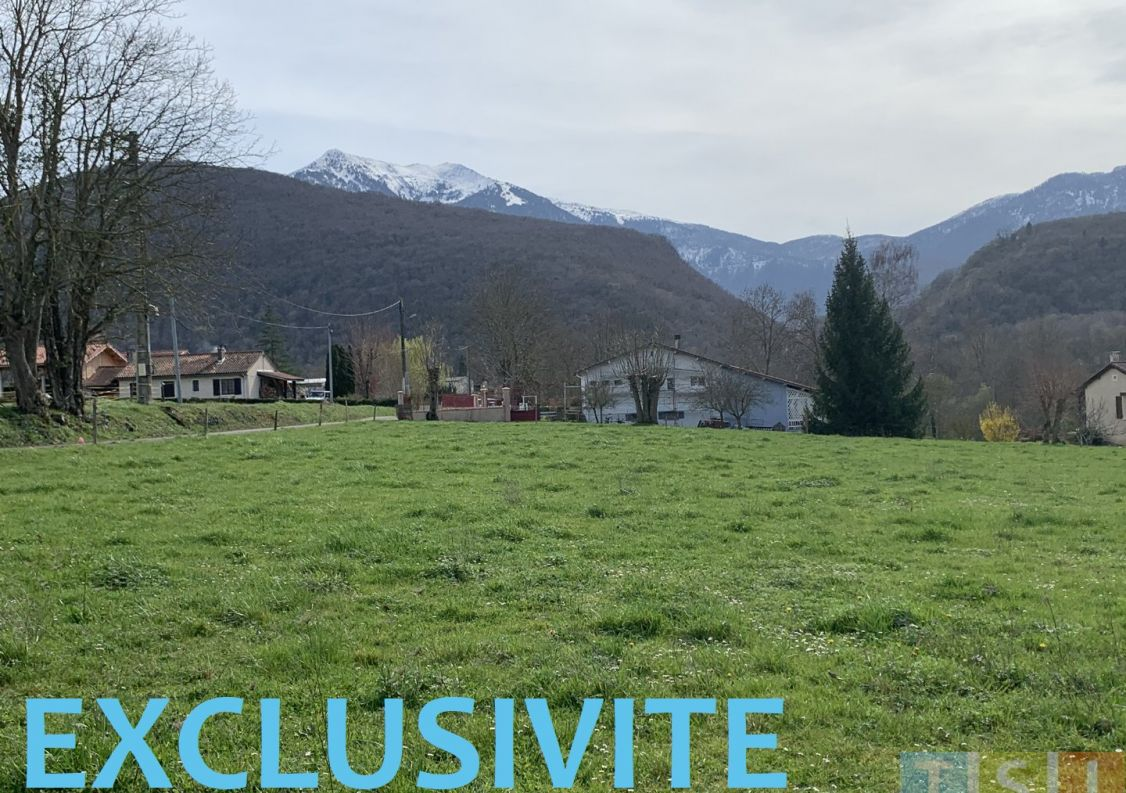 A vendre Izaut De L'hotel 3119051208 Tsi mont royal