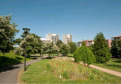 A louer Appartement Toulouse | Réf 31194671 - Adaptimmobilier.com