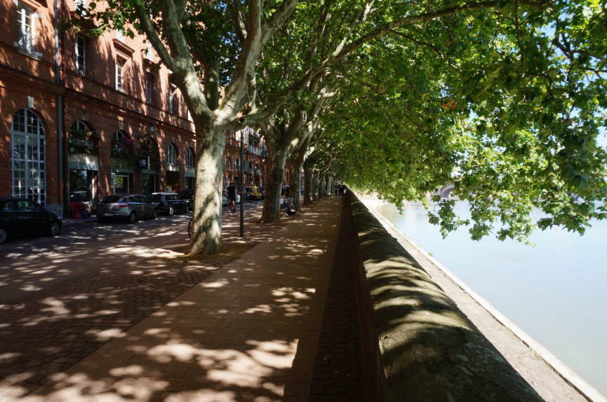 A louer Toulouse 311953437 A2j immobilier