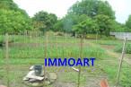 A vendre Carbonne 3120973 Immoart