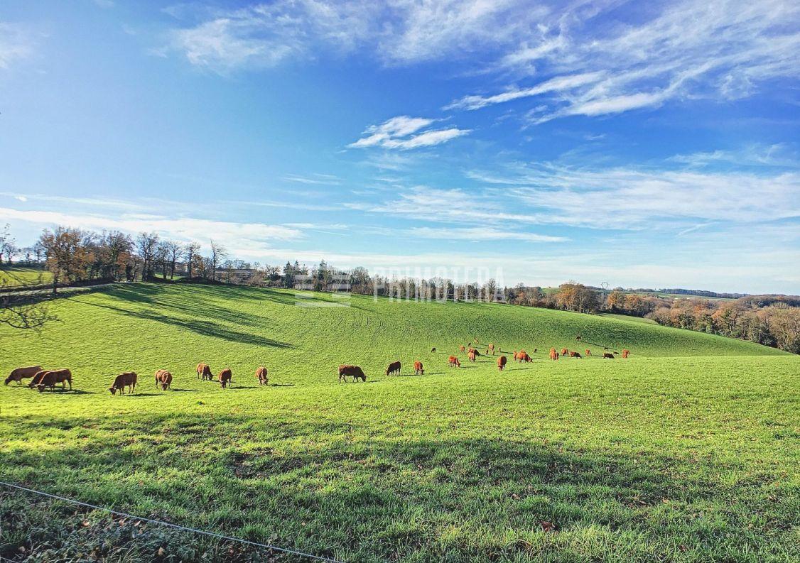 A vendre Propriété agricole Montredon Labessonnie | Réf 3122295 - Primotera