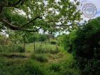 A louer  Monferran Saves   Réf 320072156 - L'occitane immobilier
