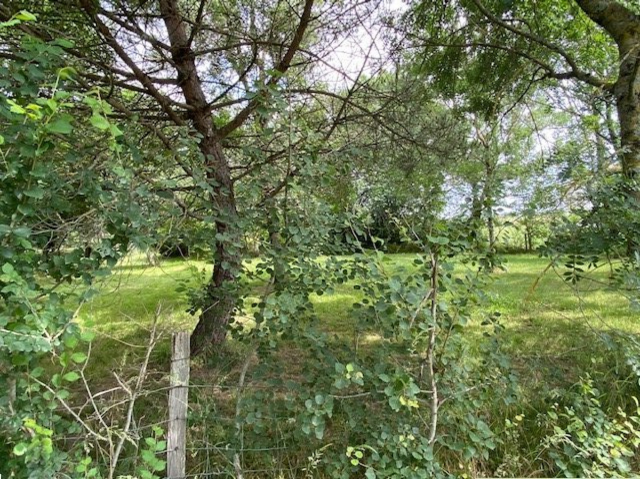 A vendre  Saint-lys   Réf 320072183 - L'occitane immobilier