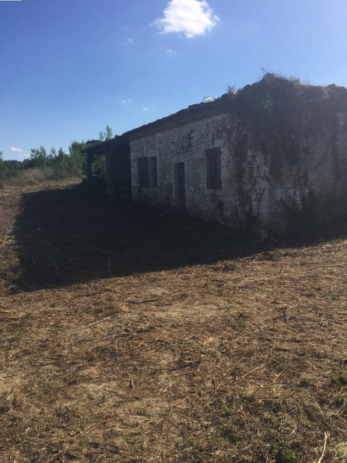 A vendre Mauvezin 32007967 L'occitane immobilier