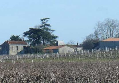 A vendre Saint Seurin De Cadourne 3300911133 Gironde immobilier