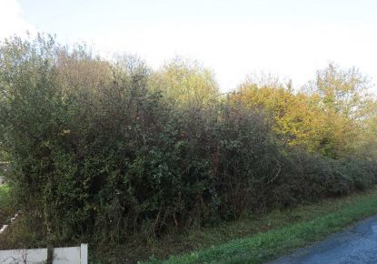 A vendre Saint Vivien De Medoc 330189219 Gironde immobilier