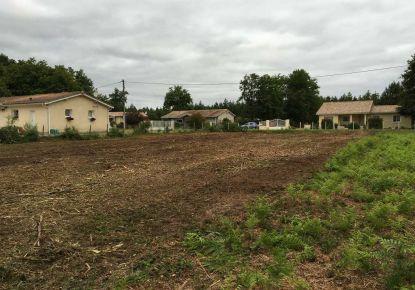 A vendre Queyrac 330239533 Gironde immobilier