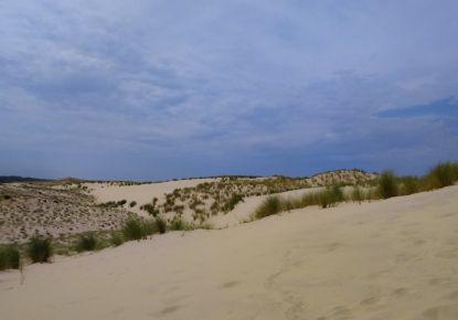 A vendre Lacanau Ocean 3303712895 Gironde immobilier