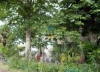 A vendre Sainte Croix Du Mont 330381618 Pierres passion immobilier