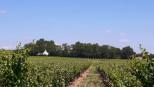 A vendre Avignon 340135137 Adaptimmobilier.com
