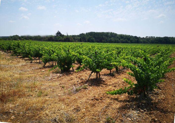 A vendre Terrain viticole Pezenas | Réf 340137577 - Agence galerie casanova