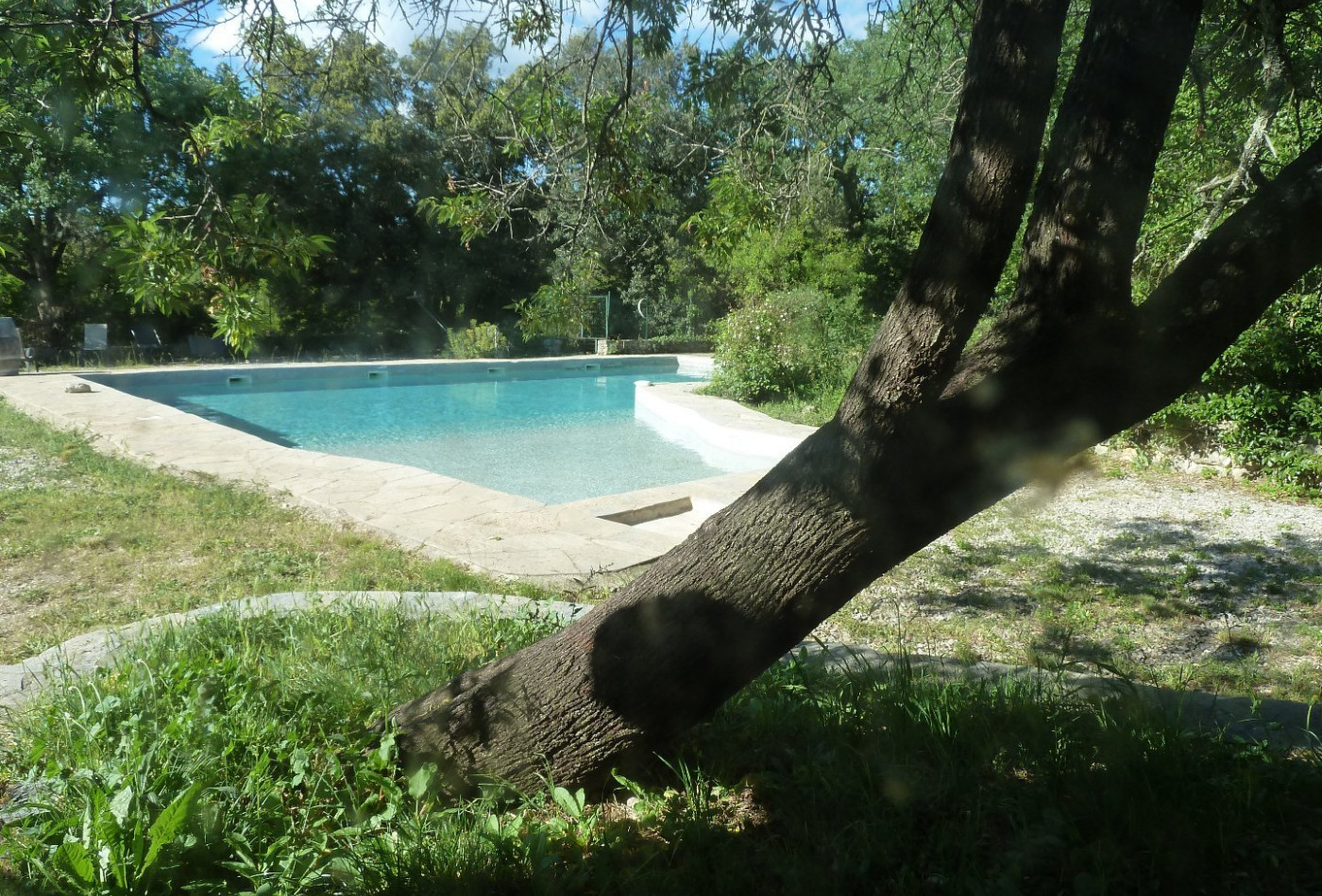 A vendre  Montpellier | Réf 340138501 - Agence galerie casanova